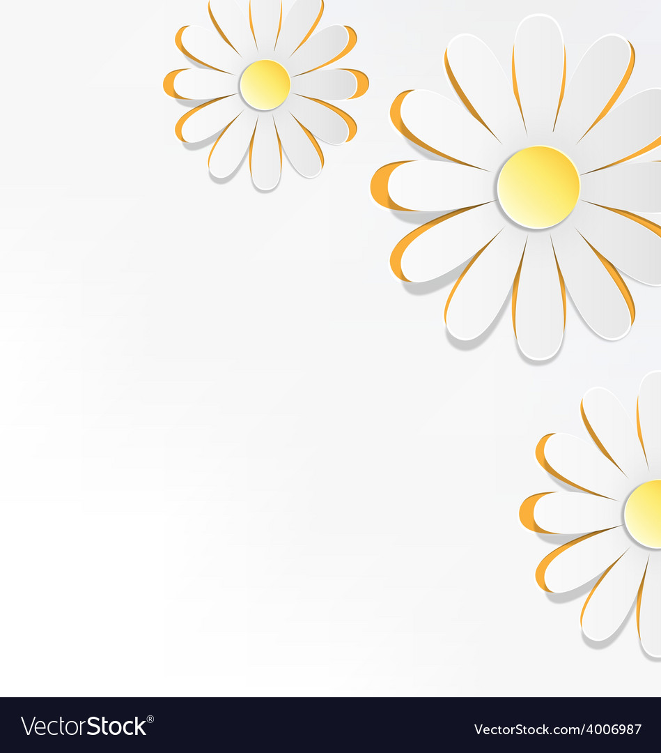Three cutout chamomiles on grayscale floral spring vector   Price: 1 Credit (USD $1)