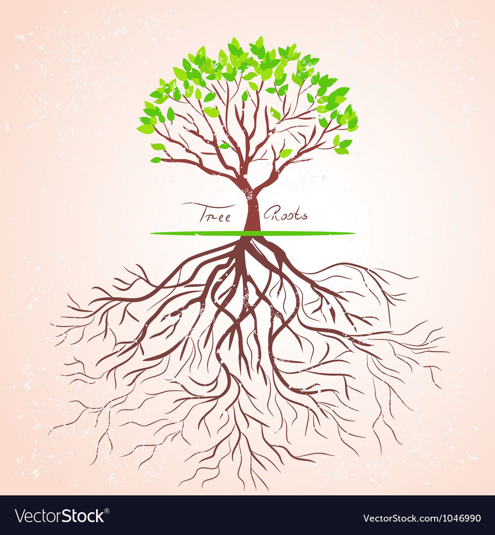 Tree roots vector | Price: 1 Credit (USD $1)