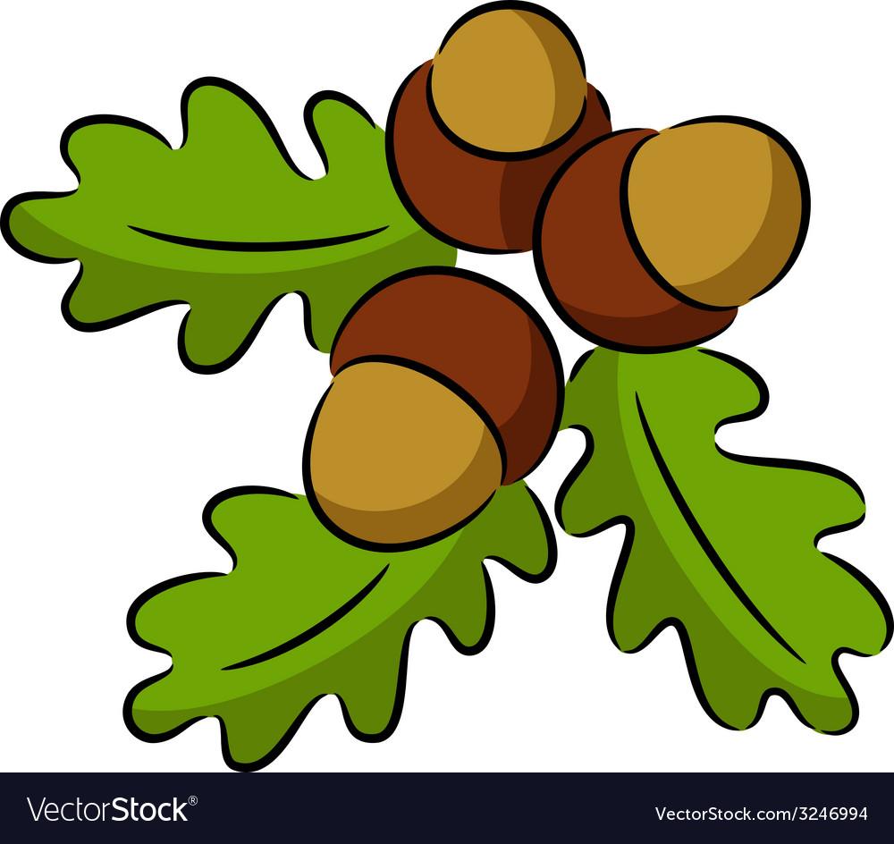 Acorn nut vector | Price: 1 Credit (USD $1)