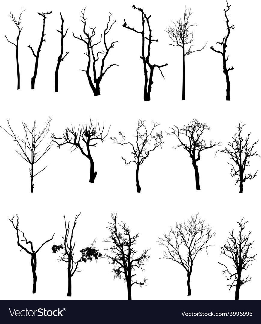 Black silhouette of a bare tree vector | Price: 1 Credit (USD $1)
