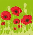 Poppy flowers on green background vector