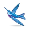 Blue hummingbird vector