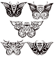 Night butterfly hawkmoth vector