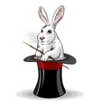 Rabbit in a hat vector