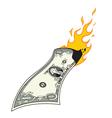 Money to burn vector