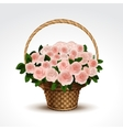 Basket of pink roses isolated vector