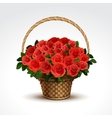 Basket of red roses isolated vector