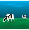 Cows graze eps10 vector