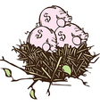 Nest eggs vector