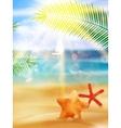 Creative graphic summer design vector