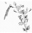 Vintage monochrome background with birch twigs vector