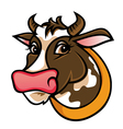 Brown farm cow vector