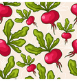 Seamless hand drawn radish background vector