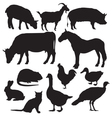 Farm animals vector