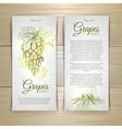 Set of wine labels grapes sketch vector