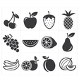 Icon fruit vector