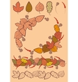 Set of autumn leaves decoration vector