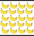 Bunches of bananas in yellow and green shades vector