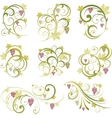 Wine design ornament vector