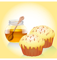 A jar of honey and two of the cake with nuts vector
