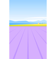 Lavender field vector