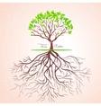 Tree roots vector