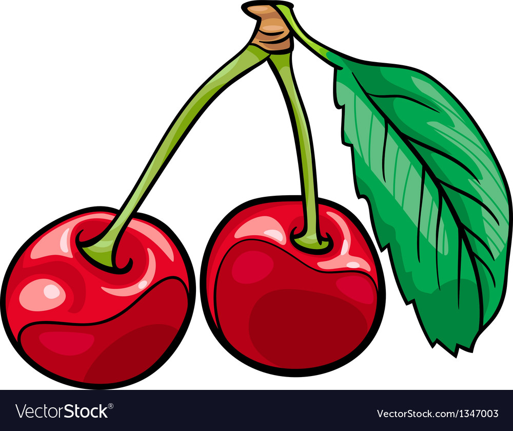 Cherry fruits cartoon vector | Price: 1 Credit (USD $1)