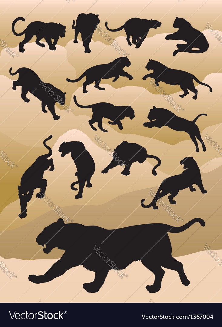 Tiger silhouettes vector | Price: 1 Credit (USD $1)