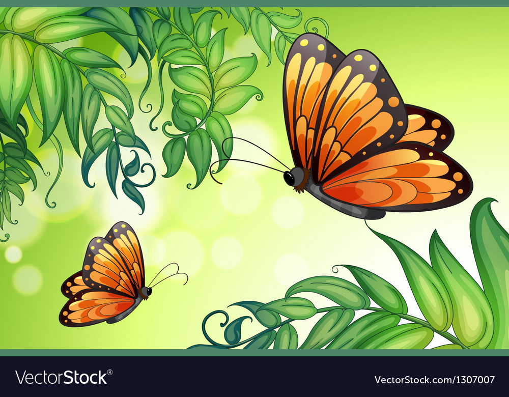 A design with butterflies and plants vector | Price: 1 Credit (USD $1)
