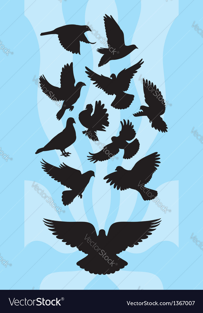 Pigeon silhouettes vector | Price: 1 Credit (USD $1)
