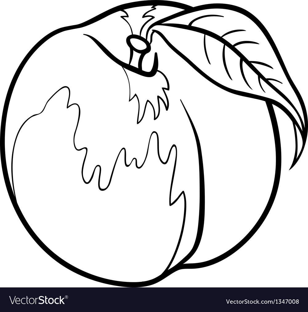 Peach for coloring book vector | Price: 1 Credit (USD $1)
