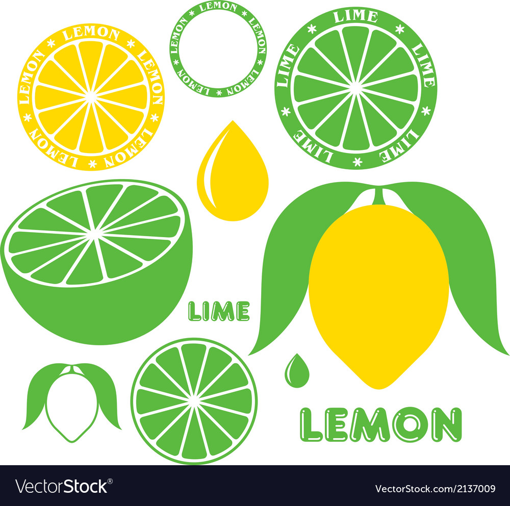 Lemon lime vector | Price: 1 Credit (USD $1)
