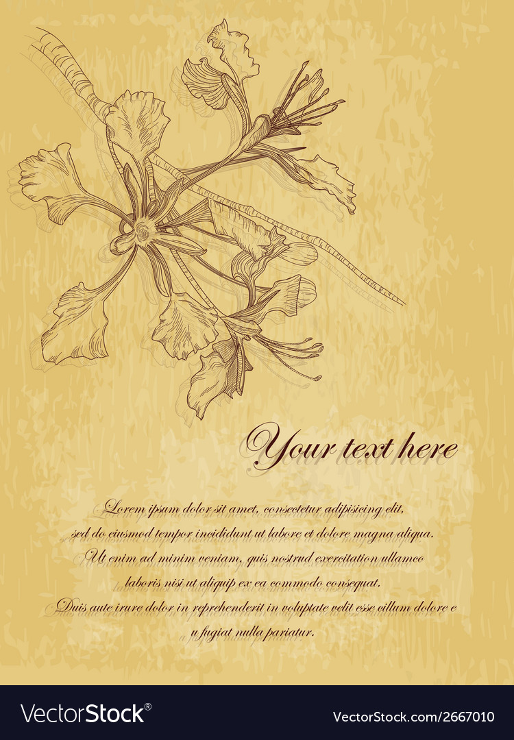 Flower vintage postcard with place for text vector | Price: 1 Credit (USD $1)