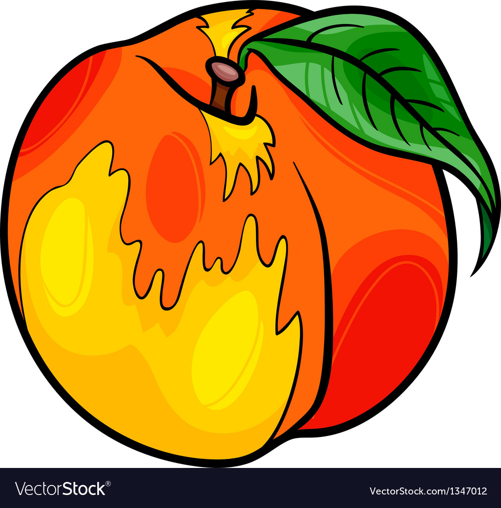Peach fruit cartoon vector | Price: 1 Credit (USD $1)