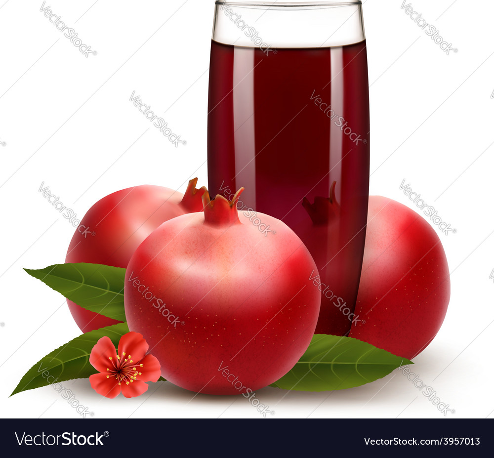 Glass of pomegranate juice with fruit vector | Price: 3 Credit (USD $3)