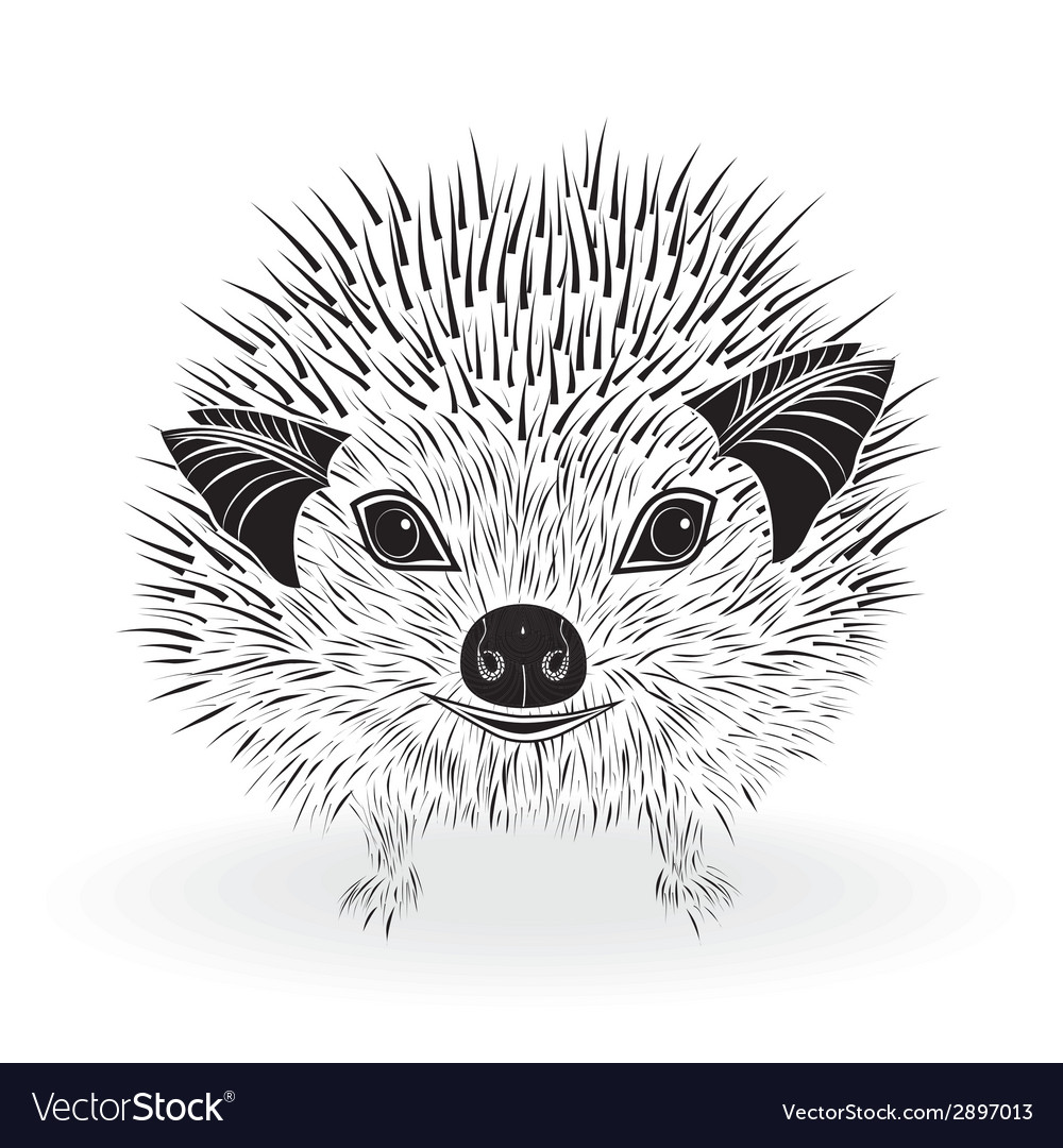 Hedgehog head animal for t-shirt vector | Price: 1 Credit (USD $1)