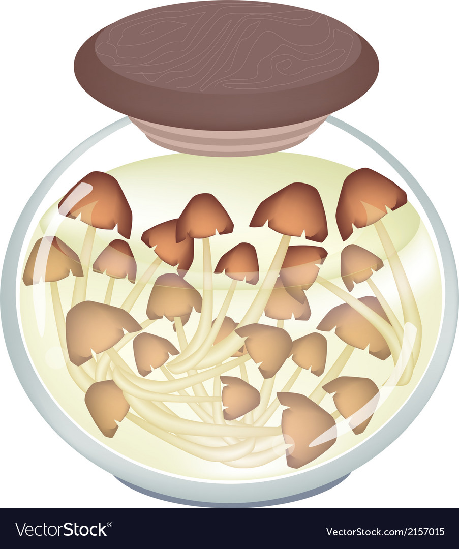 A jar of delicious marinated forest mushrooms vector | Price: 1 Credit (USD $1)