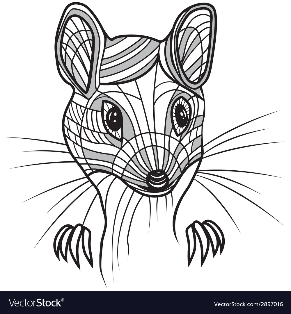 Rat or mouse head animal for t vector | Price: 1 Credit (USD $1)