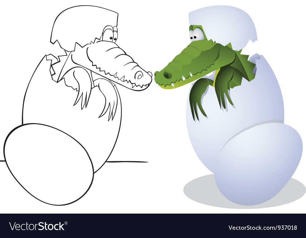 Crocodile and eggs vector | Price: 1 Credit (USD $1)
