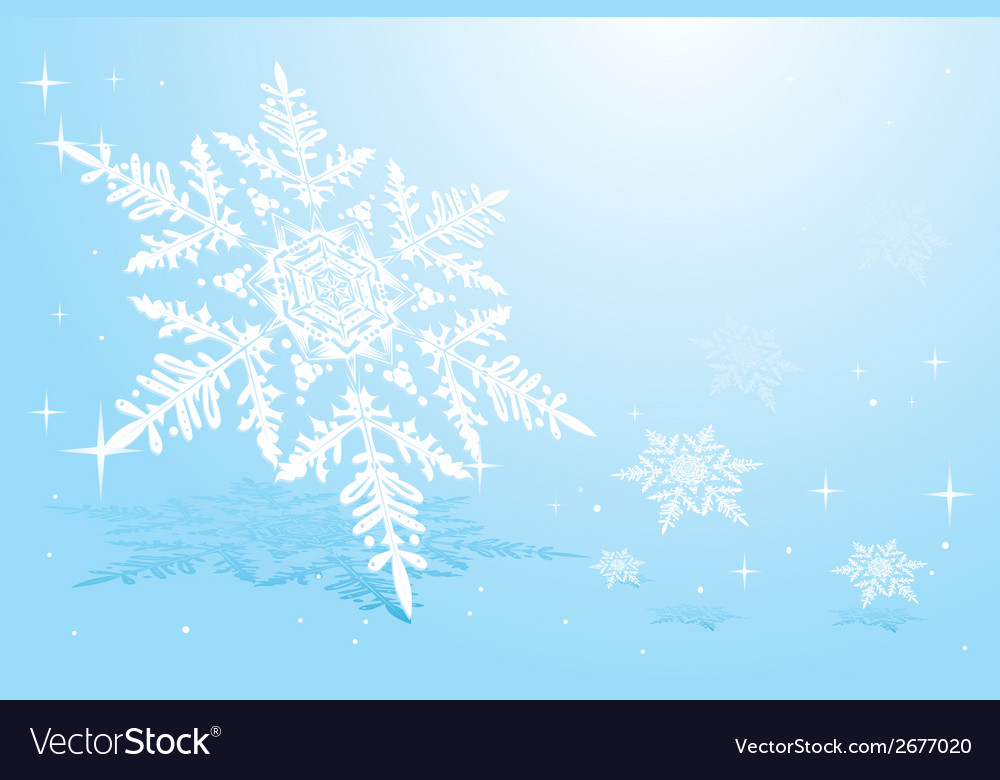 Snowflake on snow vector | Price: 1 Credit (USD $1)