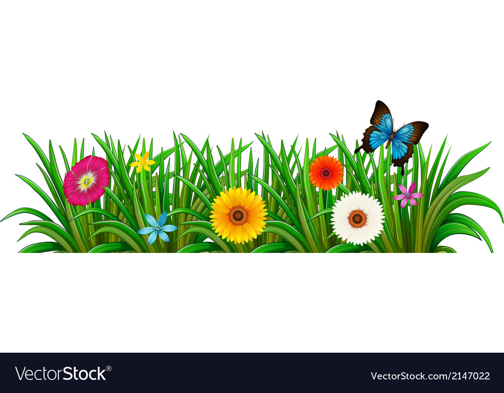 A butterfly in the garden with blooming flowers vector | Price: 1 Credit (USD $1)