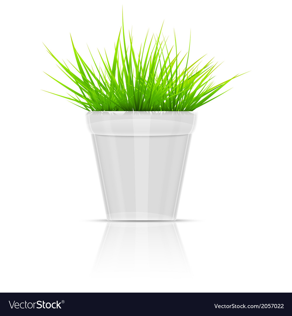 White flowerpot with green grass vector | Price: 1 Credit (USD $1)