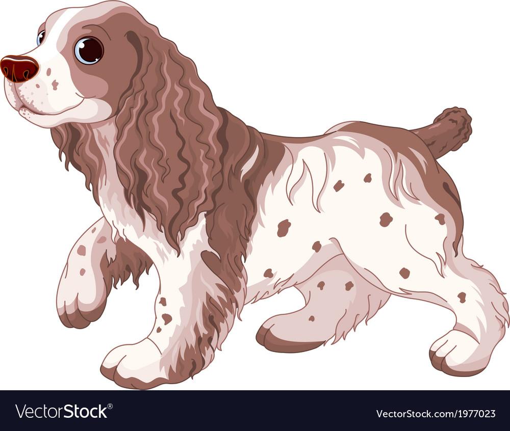 Spaniel dog vector | Price: 3 Credit (USD $3)