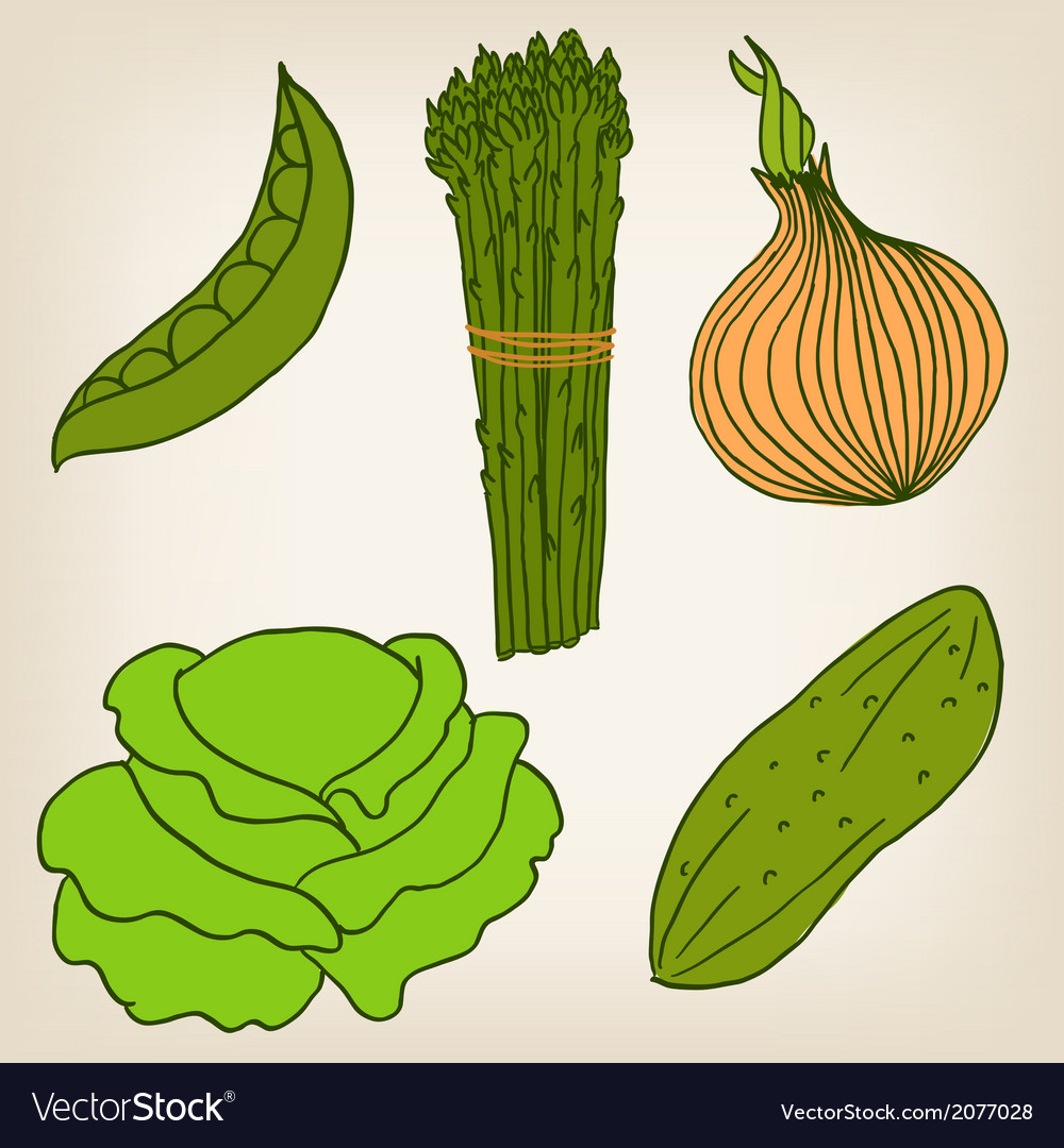 Set of vegetables vector | Price: 1 Credit (USD $1)