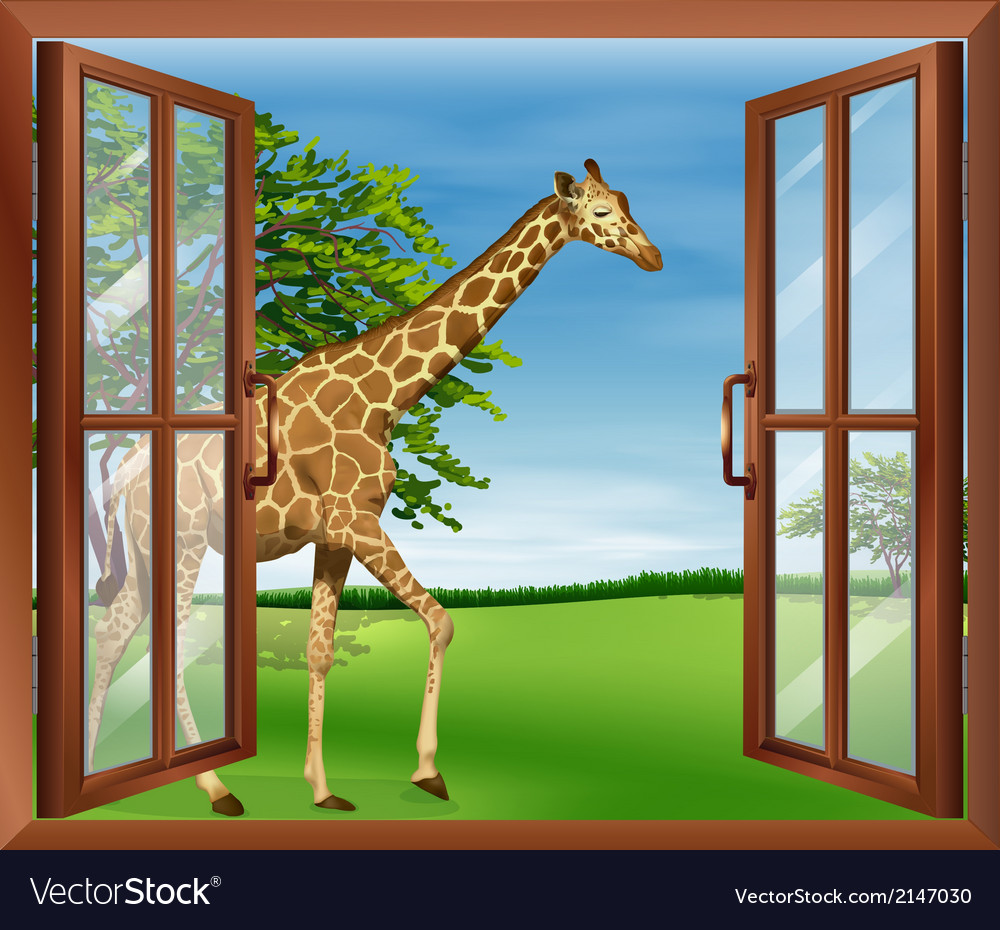 A giraffe outside the window vector | Price: 1 Credit (USD $1)