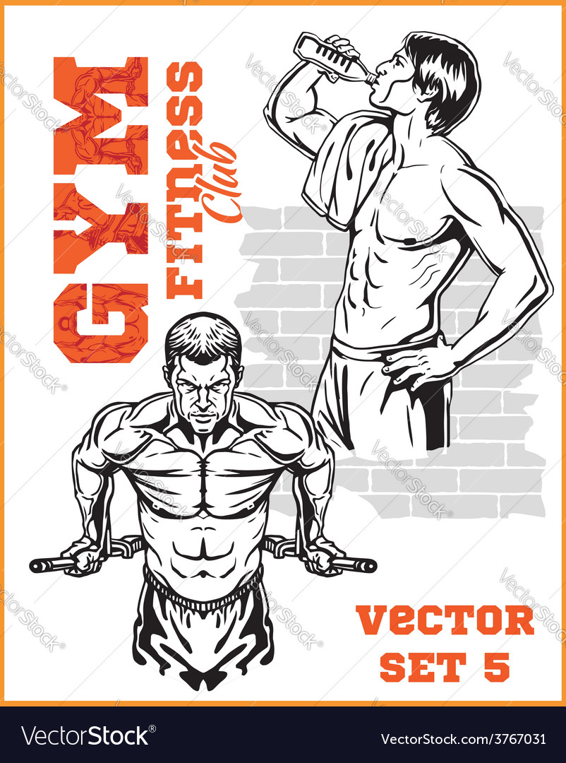 Gym bodybuilding - fitness club vector | Price: 3 Credit (USD $3)