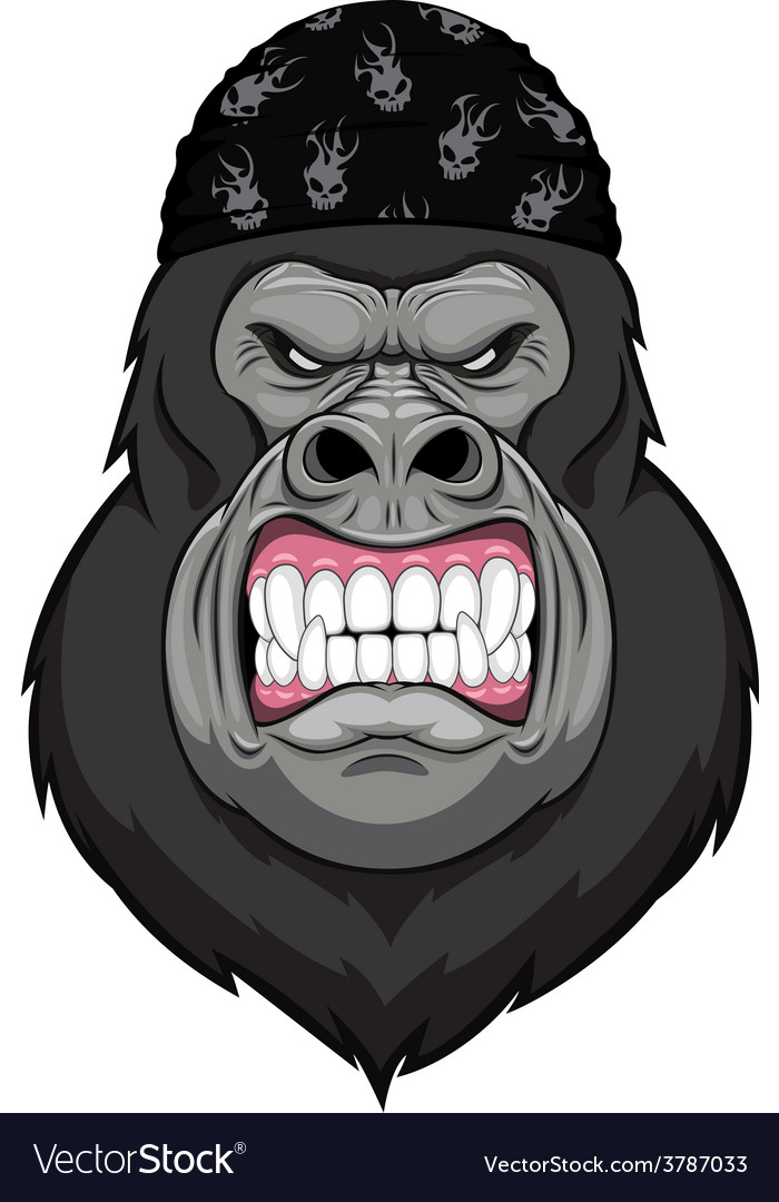 Angry gorilla head vector | Price: 1 Credit (USD $1)