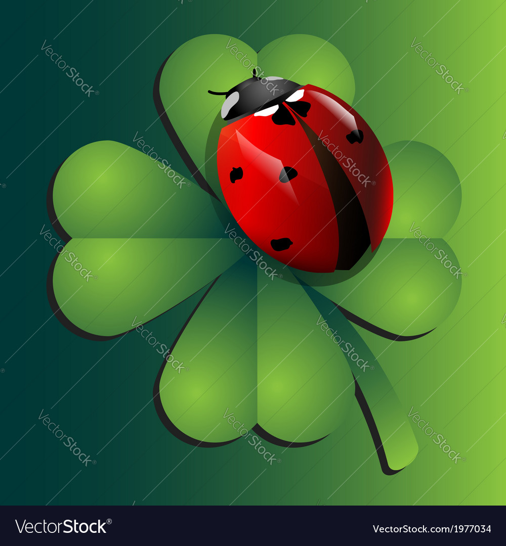 Ladybug on clover vector | Price: 1 Credit (USD $1)