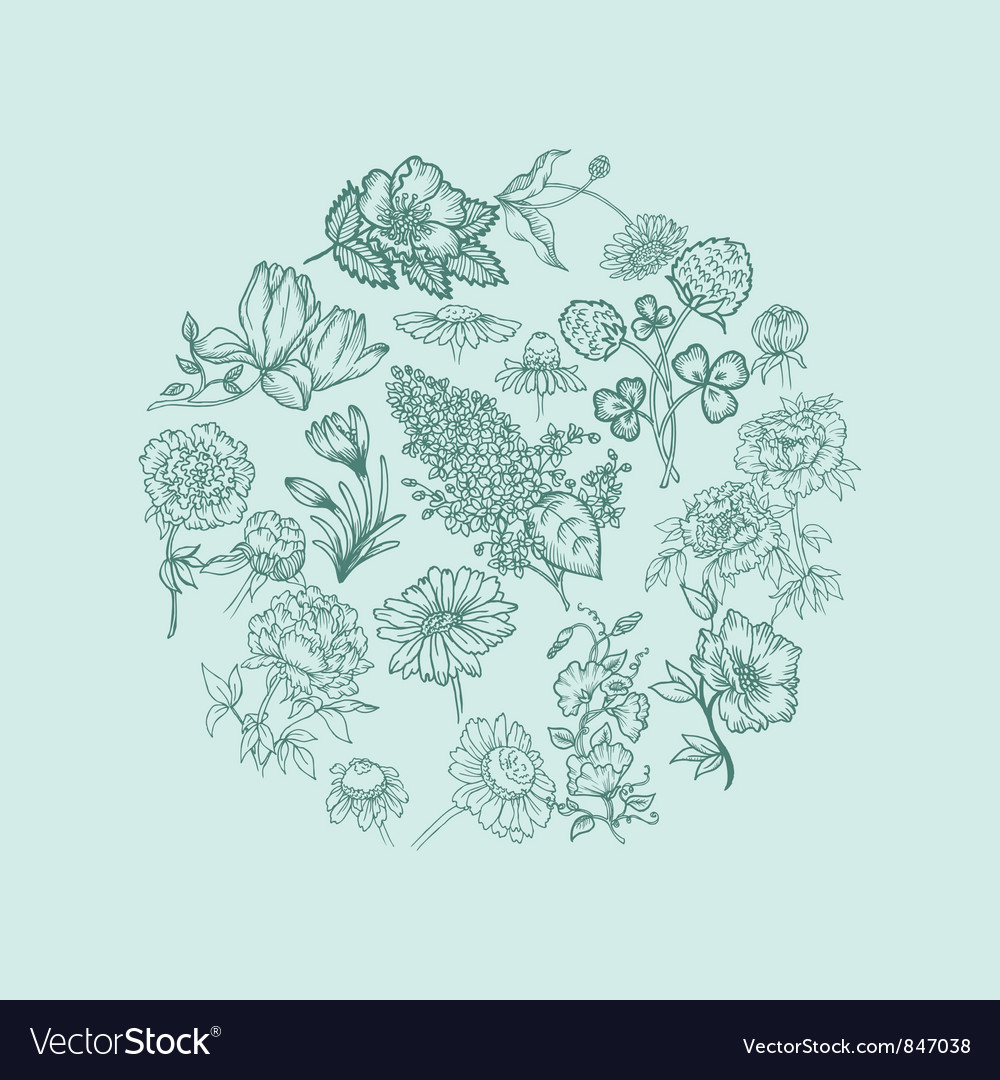 Vintage card with various flowers vector | Price: 1 Credit (USD $1)