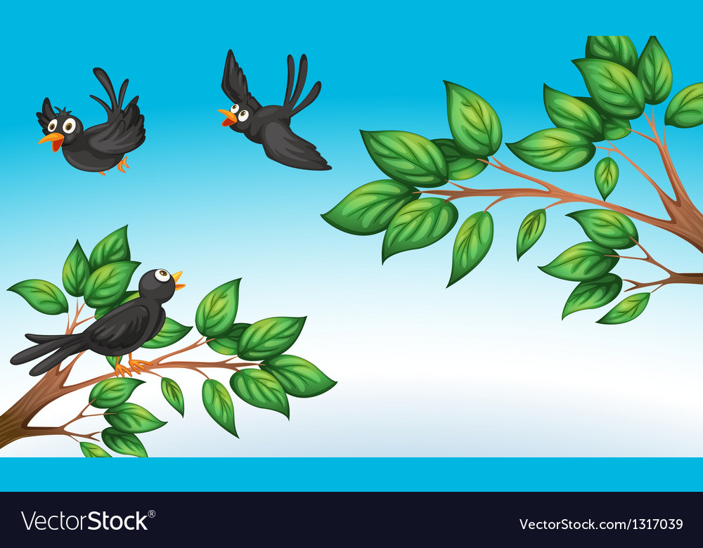 Three birds at the forest vector | Price: 1 Credit (USD $1)